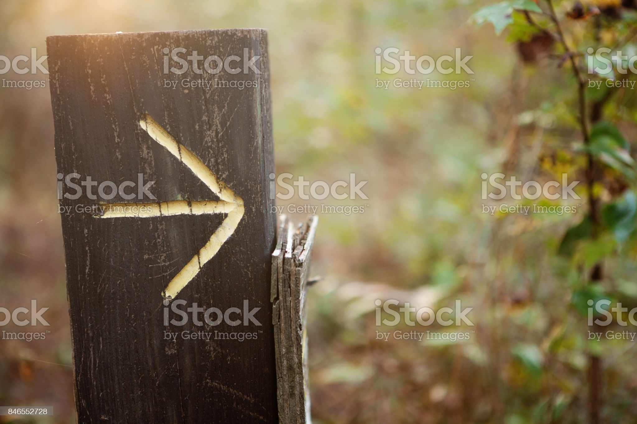yellow arrow on wood post along a hiking trail in the woods